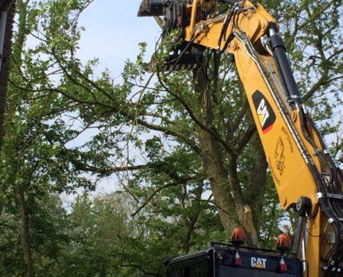 groenvoorziening-muntjewerfgraafmachines-bomen
