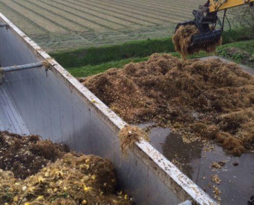 bollenkwekers-muntjewerf-graafmachines-landbouw